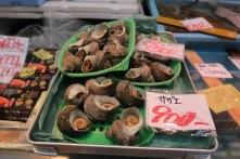 Sea-Snail