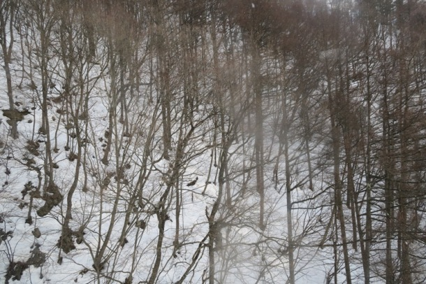 Snowy village (1)